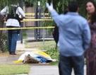 Xả súng ở Mỹ, 3 người thiệt mạng