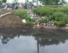 Dân khốn khổ vì trạm xử lý nước thải làng nghề dệt nhuộm