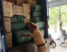 Xe tải biển số Lào chở 11 bao đạn chì không rõ nguồn gốc