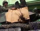 Xe thiết giáp Philippines dùng gỗ, bìa các tông chắn đạn của phiến quân