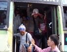 TPHCM miễn phí vé xe buýt cho người 70 tuổi trở lên
