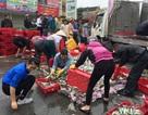 Hàng chục người dân thu gom cá giúp tài xế gặp nạn