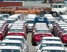 """Lượng xe nhập giảm bất thường vì người mua """"gác tiền"""", dân buôn tránh lỗ"""