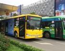 Ưu tiên xe buýt, hạn chế taxi hoạt động ở Tân Sơn Nhất