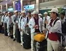 """15.000 lao động """"chui"""", nguy cơ đóng cửa thị trường xuất khẩu lao động Hàn Quốc"""
