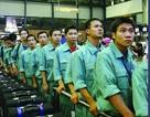 TP HCM: Hỗ trợ người đi xuất khẩu lao động