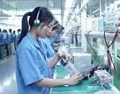 Hà Nội: Cấp giấy phép cho lao động nước ngoài qua mạng điện tử