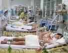 TPHCM: Hơn 16,4 nghìn người mắc sốt xuất huyết