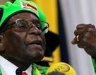 """Đảng cầm quyền hôm nay quyết định """"số phận"""" Tổng thống Zimbabwe"""