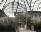 Quang cảnh xa hoa trong show diễn của Chanel
