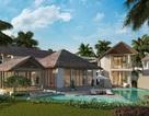 Ưu đãi đến 2,8 tỷ đồng – Biệt thự biển Sun Group thu hút nhà đầu tư