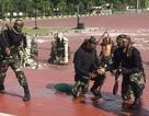Lính Indonesia uống máu rắn, lăn trên kính vỡ đón Bộ trưởng Quốc phòng Mỹ