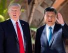 Kịch bản nào cho Bắc Kinh nếu chiến tranh thương mại Trung-Mỹ bùng phát?