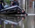 """""""Kinh đô ánh sáng"""" Paris ngập trong biển nước"""