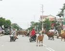 Gói bảo hiểm giảm bớt 2 nỗi lo về tai nạn cho người dân ở vùng nông thôn