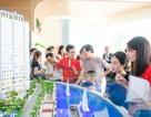 Năm 2018, thị trường căn hộ Bắc Sài Gòn trỗi dậy mạnh mẽ