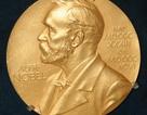 Bạn biết gì về giải thưởng hàn lâm danh giá bậc nhất thế giới- Giải Nobel?