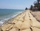 Liên minh châu Âu hỗ trợ Việt Nam đối phó với tình trạng xói mòn bờ biển