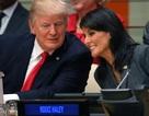 Đại sứ Mỹ tại LHQ bác tin đồn về mối quan hệ với Tổng thống Trump