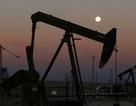 Mỹ khai thác dầu kỉ lục, Nga-OPEC lao đao đối phó