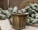 Người đàn ông ném nhầm gần nửa tỷ đồng vào bãi rác