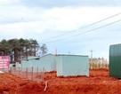 Đắk Nông: Nhập nhằng giao đất, nhiều diện tích đất rừng tiếp tục bị lấn chiếm