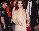 Angelina Jolie xinh đẹp và cuốn hút từ mọi góc nhìn