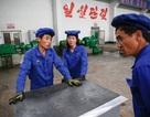 Quốc gia tiếp theo trục xuất lao động Triều Tiên