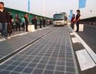 Suýt đổ oan cho trộm, đường cao tốc năng lượng mặt trời mất tấm thực ra vì ...thiết kế tồi