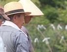 Nhật Bản: Nhiều người tìm đến niềm vui lao động sau nghỉ hưu