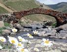 Thổ Nhĩ Kỳ: Cầu đá trăm tuổi biến mất bí ẩn