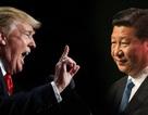 IMF: Chiến tranh thương mại khiến Trung Quốc tổn thất nặng nề hơn Mỹ
