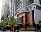 """PCC1  tung chính sách """"khủng """" chào đón cư dân cuối cùng của Mỹ Đình Plaza 2"""