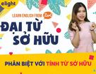 Học tiếng Anh: Cách dùng Đại từ sở hữu và Tính từ sở hữu chuẩn nhất!