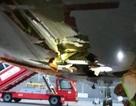Ấn Độ: Máy bay va chạm thủng bụng, phi công vẫn cho cất cánh