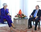 Thủ tướng Nguyễn Xuân Phúc tiếp Tổng Giám đốc Quỹ tiền tệ quốc tế