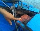 Tàu cá Quảng Nam bị đâm hỏng ở vùng biển Hoàng Sa