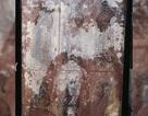 Trung Quốc: Phát lộ hài cốt người phụ nữ 900 năm tuổi vẫn còn nguyên tóc, móng tay