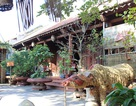 Ngôi làng toàn những căn nhà cổ trăm tuổi giá bạc tỷ ở Hà Nội