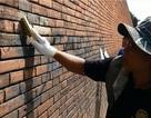Du khách say xỉn sơn vẽ lên tường thành cổ đối diện án tù 10 năm