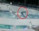 Sốc khoảnh khắc cô gái ngã vào bể nuôi cá mập đúng vào giờ cho cá ăn