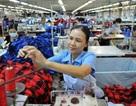 Hơn 48 % nguồn việc làm dành cho phụ nữ