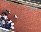 Hà Nội: Người đàn ông rơi từ tầng 6 bệnh viện xuống đất tử vong