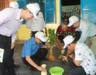 Khánh Hòa: Hơn 2.300 ca mắc sốt xuất huyết kể từ đầu năm