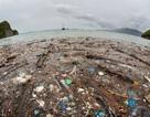 Các nhà khoa học cảnh báo: Vi nhựa xâm nhập cả vào cơ thể con người