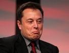 Không thể ngờ tài khoản Twitter của tỷ phú công nghệ Elon Musk bị khóa vì lý do này