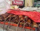 """Kỳ lạ ngôi làng ở Hà Nội cả phụ nữ, trẻ em đều """"nghiện"""" ăn thịt chuột"""