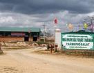 Công ty môi trường đô thị Đà Nẵng bị phạt hơn 1 tỷ, thay người đại diện vốn nhà nước