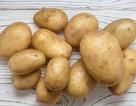 Tại sao không nên để khoai tây trong tủ lạnh?