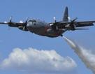Taliban nói bắn rơi máy bay quân sự Mỹ, 11 người chết